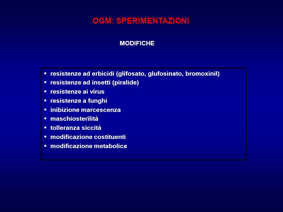 OGM: SPERIMENTAZIONI MODIFICHE  resistenze ad erbicidi (glifosato, glufosinato, bromoxinil)  resistenze ad insetti (piralide)  resistenze ai virus