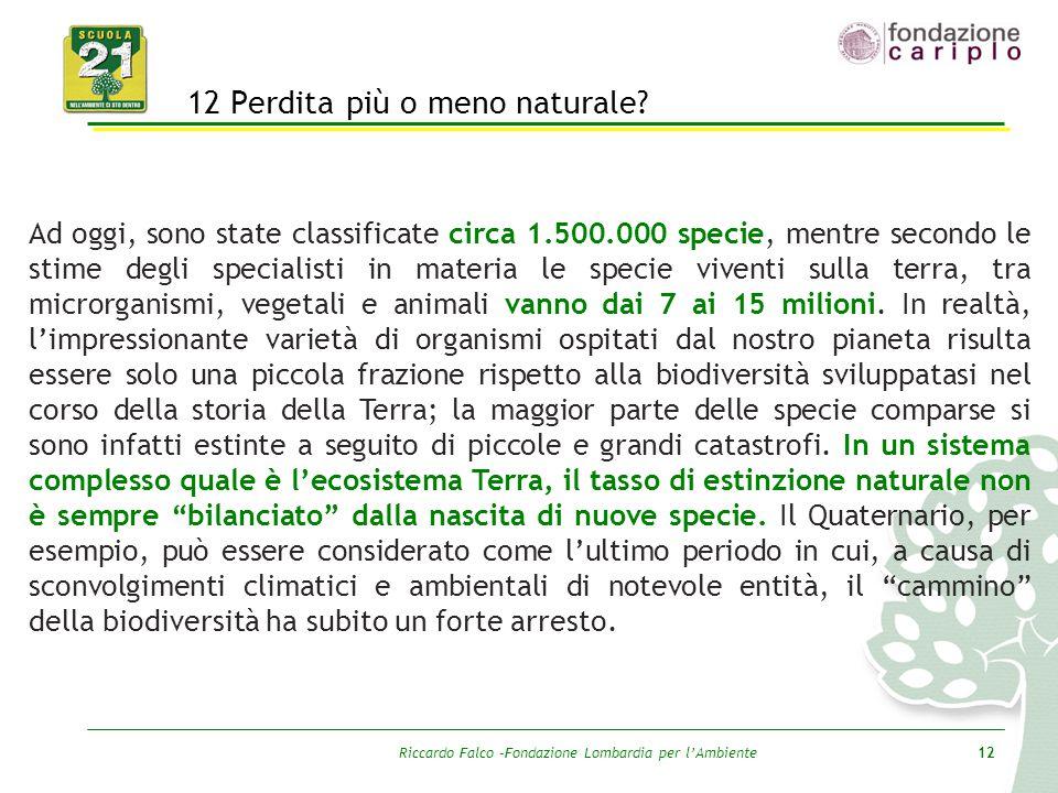 Riccardo Falco –Fondazione Lombardia per l'Ambiente12 12 Perdita più o meno naturale? Ad oggi, sono state classificate circa 1.500.000 specie, mentre