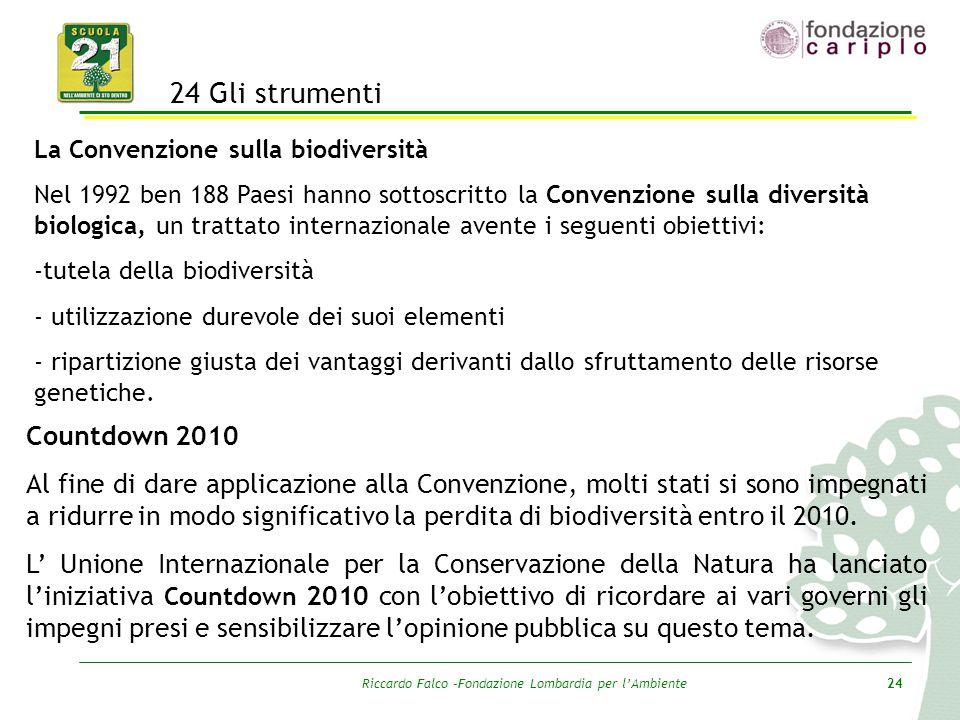 Riccardo Falco –Fondazione Lombardia per l'Ambiente24 24 Gli strumenti La Convenzione sulla biodiversità Nel 1992 ben 188 Paesi hanno sottoscritto la