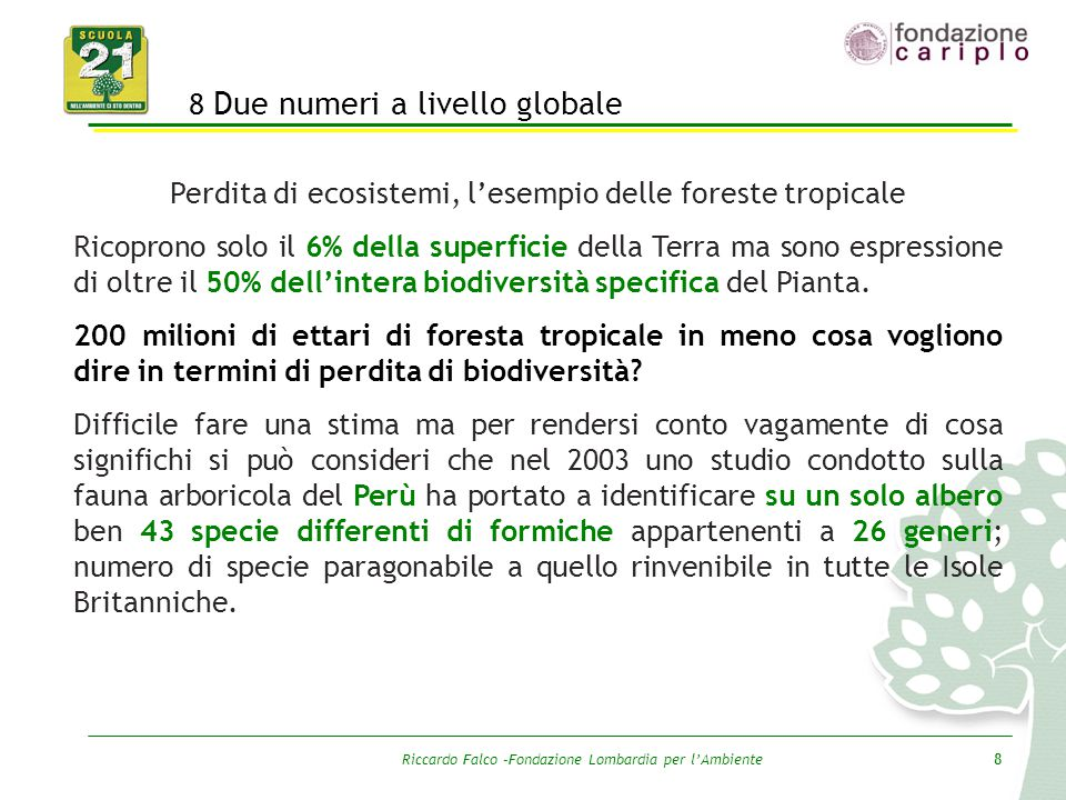 Riccardo Falco –Fondazione Lombardia per l'Ambiente8 8 Due numeri a livello globale Perdita di ecosistemi, l'esempio delle foreste tropicale Ricoprono
