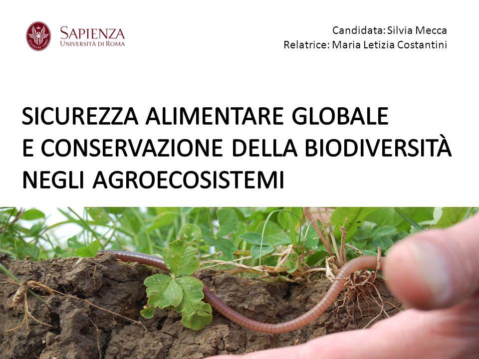 Candidata: 1240332 Silvia Mecca Relatrice: Prof.ssa Maria Letizia Costantini CURRICULUM BIOECOLOGICO Candidata: Silvia Mecca Relatrice: Maria Letizia Costantini