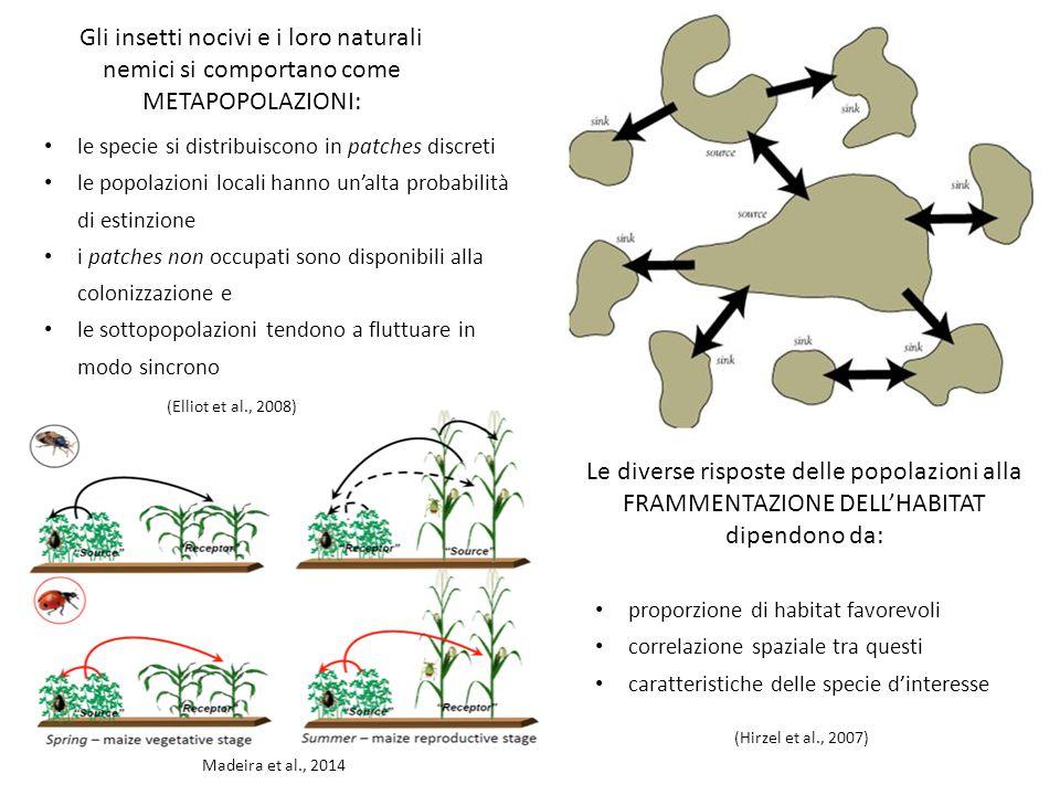 le specie si distribuiscono in patches discreti le popolazioni locali hanno un'alta probabilità di estinzione i patches non occupati sono disponibili alla colonizzazione e le sottopopolazioni tendono a fluttuare in modo sincrono Gli insetti nocivi e i loro naturali nemici si comportano come METAPOPOLAZIONI: Le diverse risposte delle popolazioni alla FRAMMENTAZIONE DELL'HABITAT dipendono da: proporzione di habitat favorevoli correlazione spaziale tra questi caratteristiche delle specie d'interesse (Hirzel et al., 2007) (Elliot et al., 2008) Madeira et al., 2014