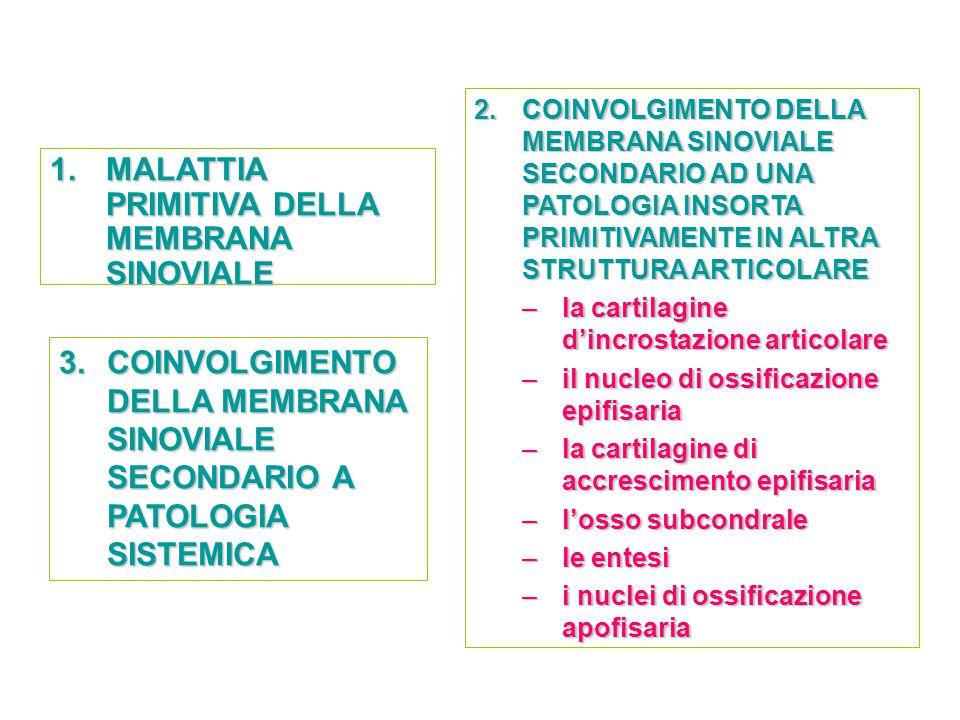 1.MALATTIA PRIMITIVA DELLA MEMBRANA SINOVIALE 2.COINVOLGIMENTO DELLA MEMBRANA SINOVIALE SECONDARIO AD UNA PATOLOGIA INSORTA PRIMITIVAMENTE IN ALTRA ST