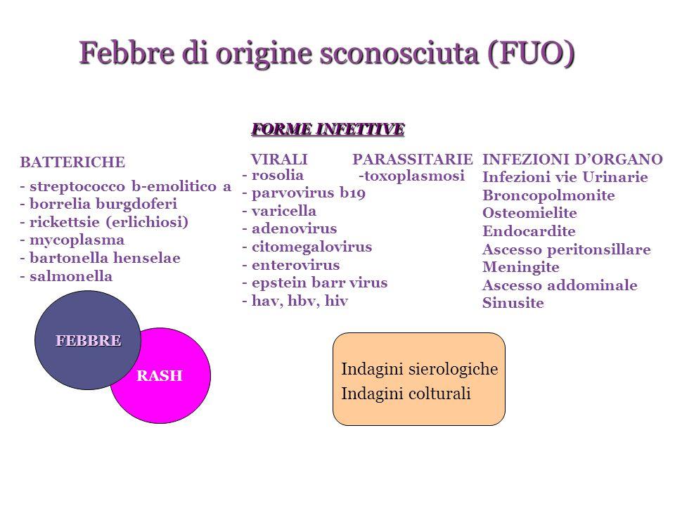 RASH FEBBRE BATTERICHE - streptococco b-emolitico a - borrelia burgdoferi - rickettsie (erlichiosi) - mycoplasma - bartonella henselae - salmonella PA