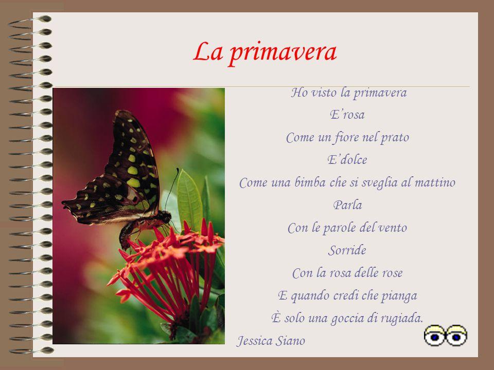 La Primavera La primavera è un fiore, Che prima sboccia, poi muore e Rinascono prati,erbe e frutti. Con la primavera Al mattino si sente Il canto degl