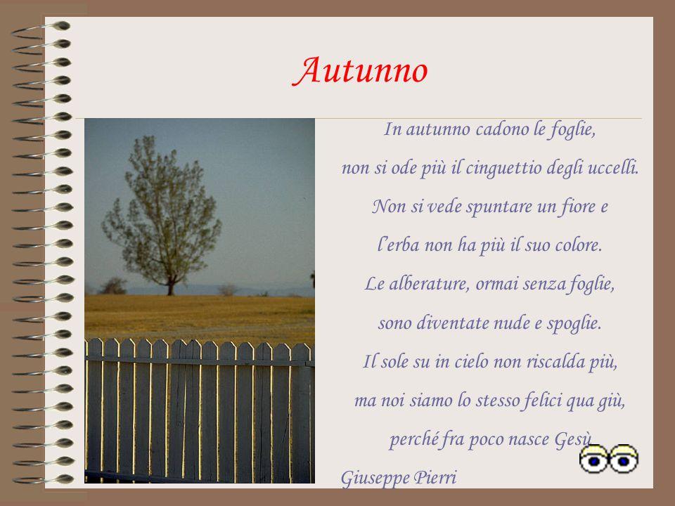 In autunno cadono le foglie, non si ode più il cinguettio degli uccelli.