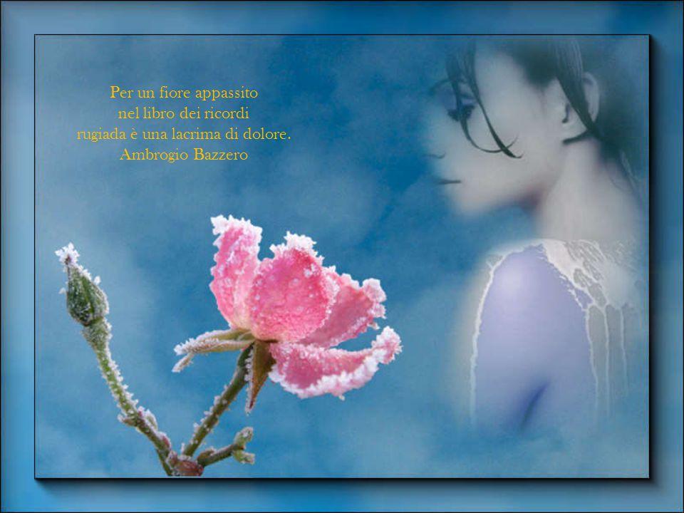 Amore e fiori non durano che una primavera. Virgilio Brocchi