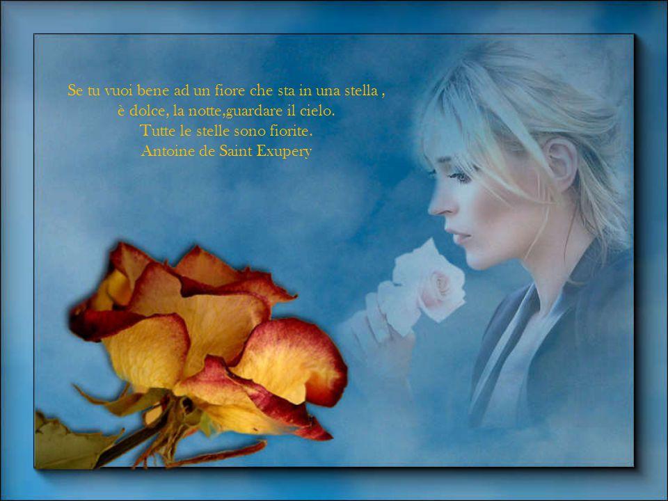 Una spina nel cuore una freccia nel fiore. Il poeta della notte