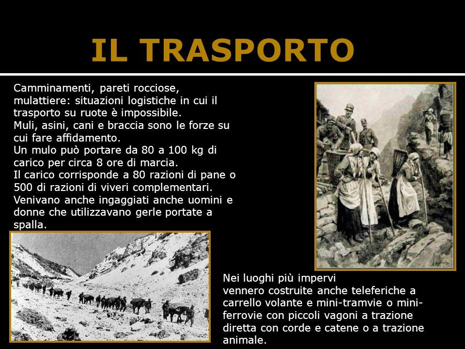 IL TRASPORTO Camminamenti, pareti rocciose, mulattiere: situazioni logistiche in cui il trasporto su ruote è impossibile. Muli, asini, cani e braccia