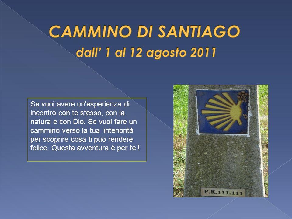  1º agosto Percorso Milano --- Arles (pranzo)-- --- Lourdes (pernottamento a Lourdes)  2 agosto Messa e Visita di Lourdes----- viaggio 4 ore a Laredo (pernottamento a Laredo)  3 agosto Prima tappa della camminata a piedi : Portugalete---Castro Urdiales --- 27.62 Km ----pernottamento a Santoña
