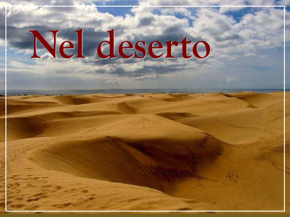 Il deserto è un'educazione alla conoscenza di sé.
