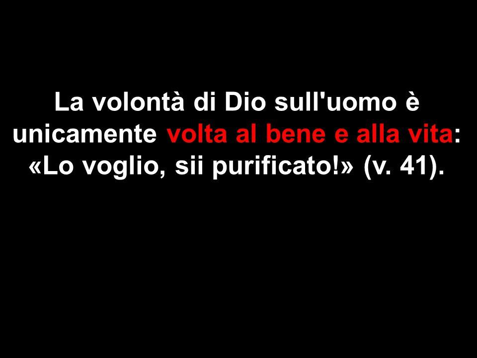 La volontà di Dio sull uomo è unicamente volta al bene e alla vita: «Lo voglio, sii purificato!» (v.