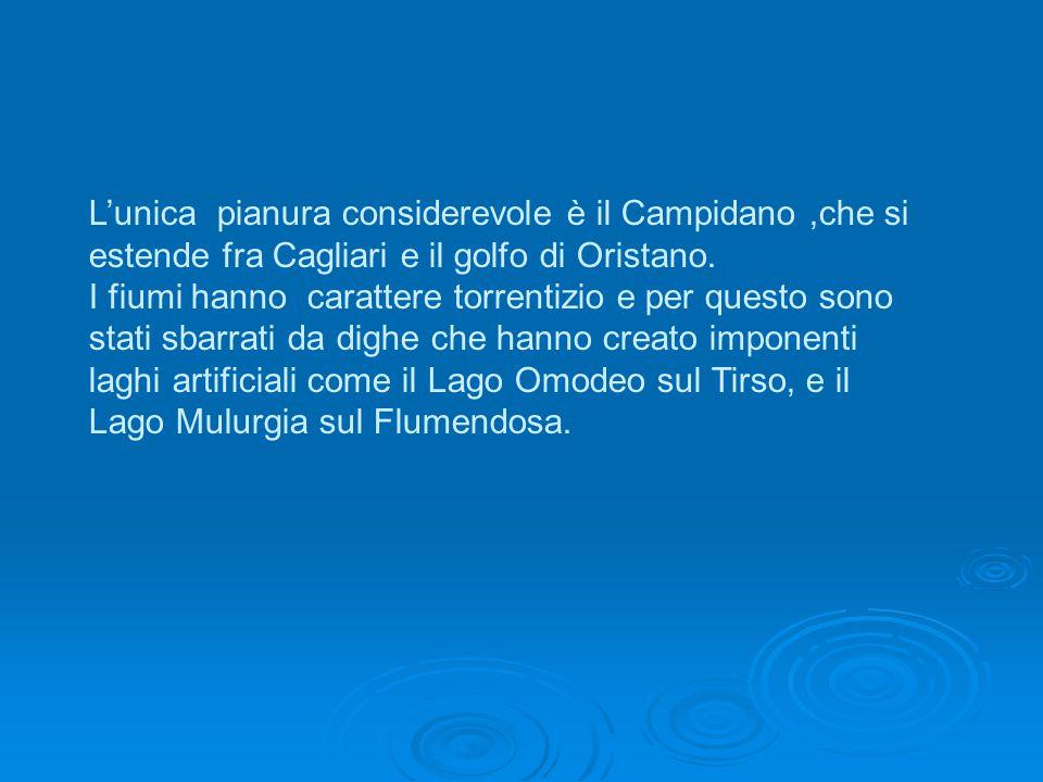L'unica pianura considerevole è il Campidano,che si estende fra Cagliari e il golfo di Oristano.