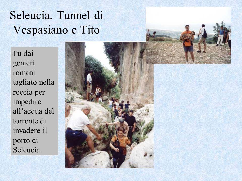 Seleucia. Tunnel di Vespasiano e Tito Fu dai genieri romani tagliato nella roccia per impedire all'acqua del torrente di invadere il porto di Seleucia