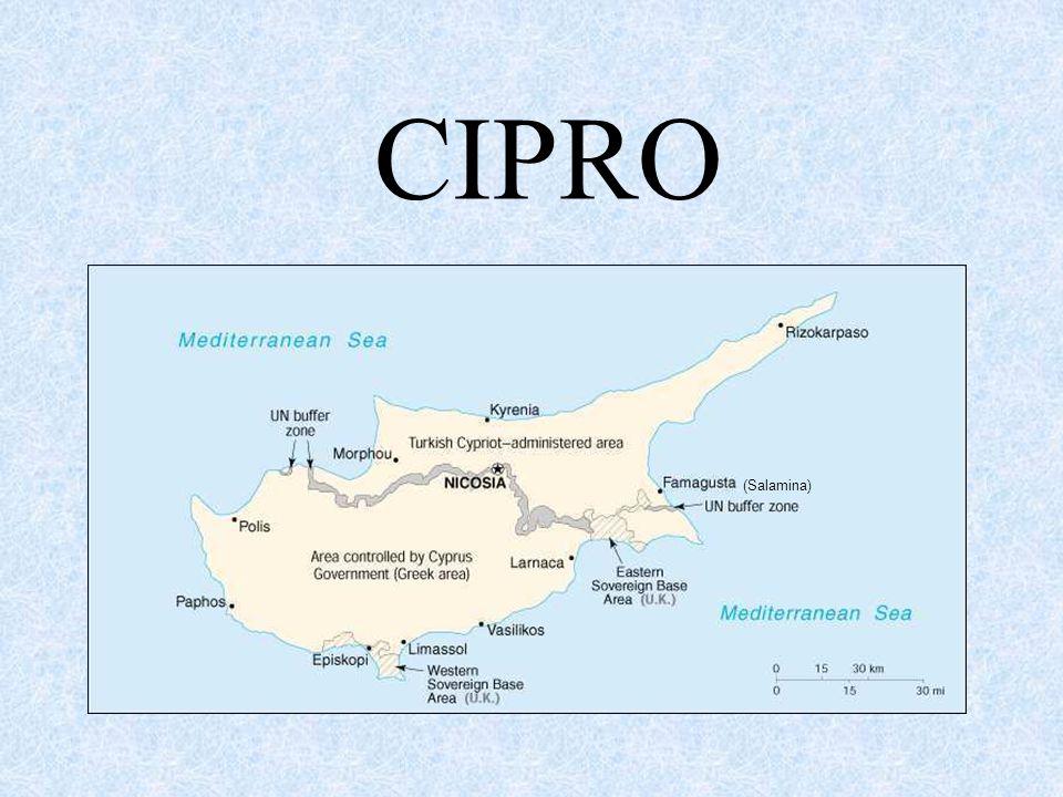 CIPRO (Salamina)