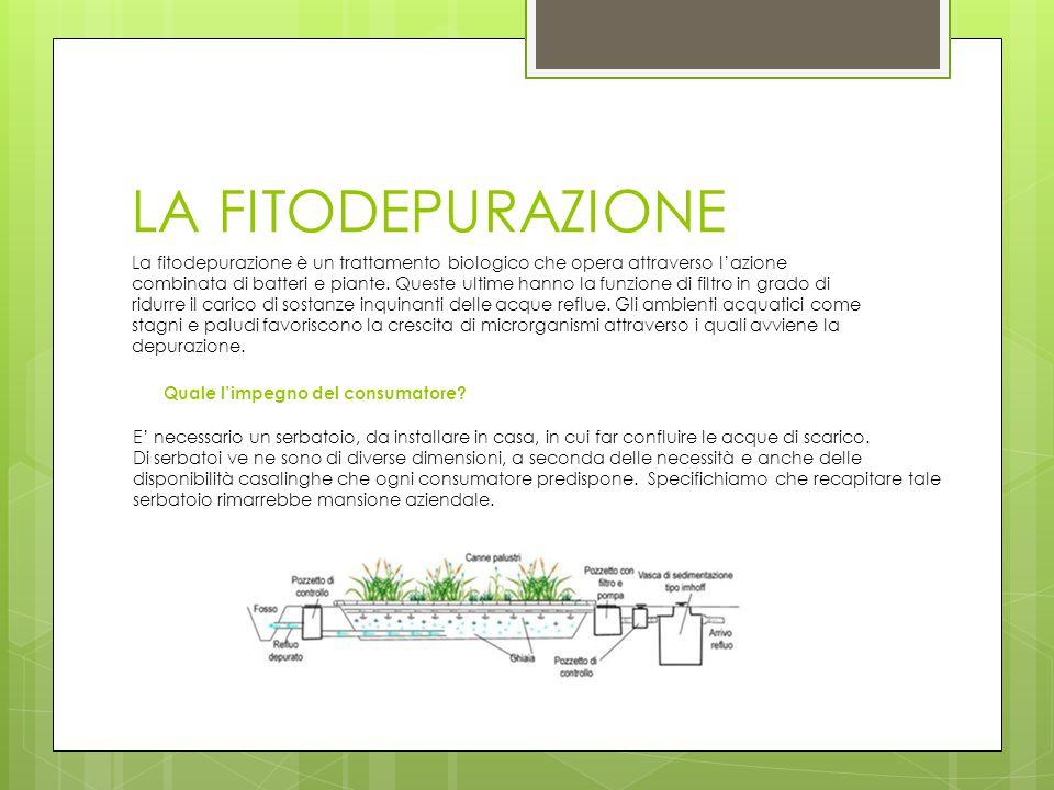 LA FITODEPURAZIONE Quale l'impegno del consumatore? La fitodepurazione è un trattamento biologico che opera attraverso l'azione combinata di batteri e