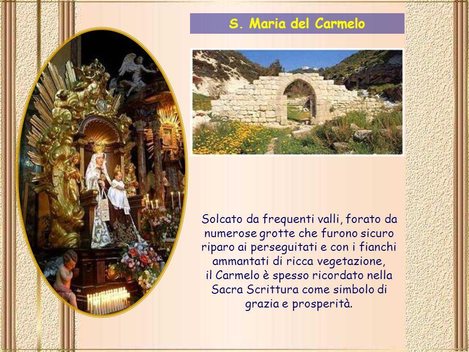 Il Carmelo è una catena di colline (in ebraico karmel che significa Frutteto, giardino).