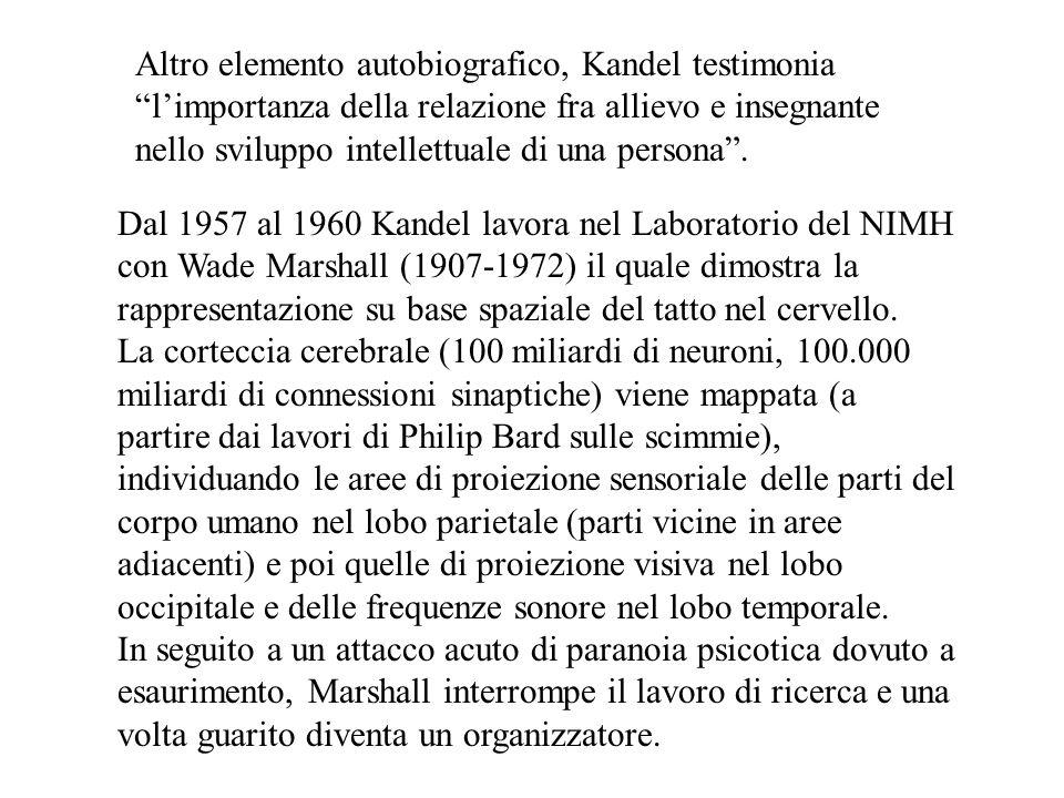 Dal 1957 al 1960 Kandel lavora nel Laboratorio del NIMH con Wade Marshall (1907-1972) il quale dimostra la rappresentazione su base spaziale del tatto