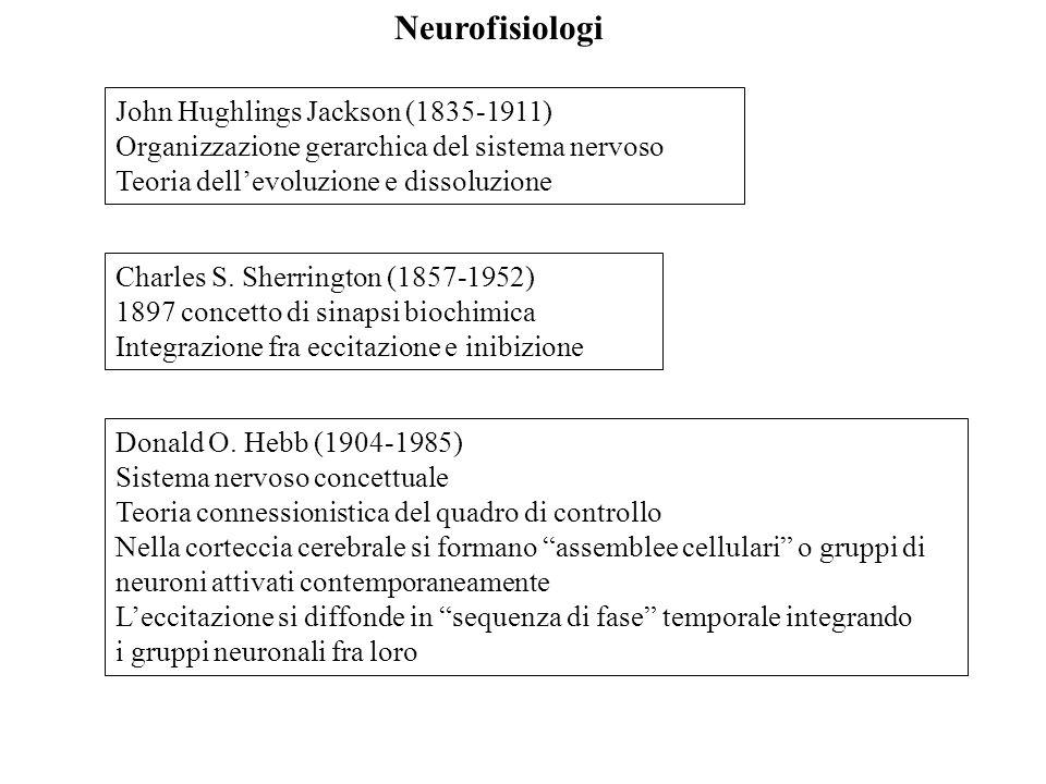 Già alla fine degli anni sessanta, Kandel ha individuato i 6 motoneuroni del riflesso di ritrazione della branchia, stimolabili direttamente da 6 dei 24 neuroni sensoriali della pelle del sifone e, indirettamente, attraverso degli interneuroni.