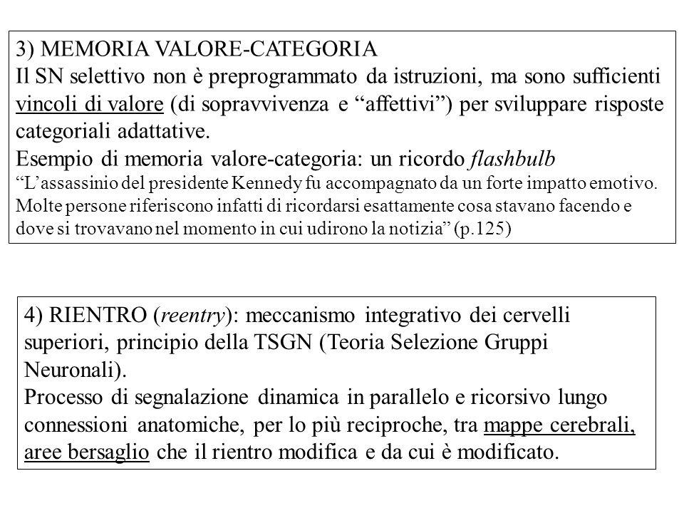 3) MEMORIA VALORE-CATEGORIA Il SN selettivo non è preprogrammato da istruzioni, ma sono sufficienti vincoli di valore (di sopravvivenza e affettivi ) per sviluppare risposte categoriali adattative.