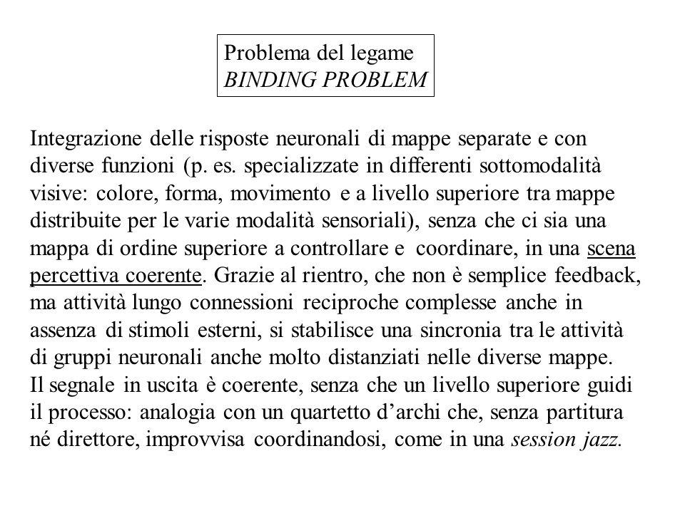 Problema del legame BINDING PROBLEM Integrazione delle risposte neuronali di mappe separate e con diverse funzioni (p.
