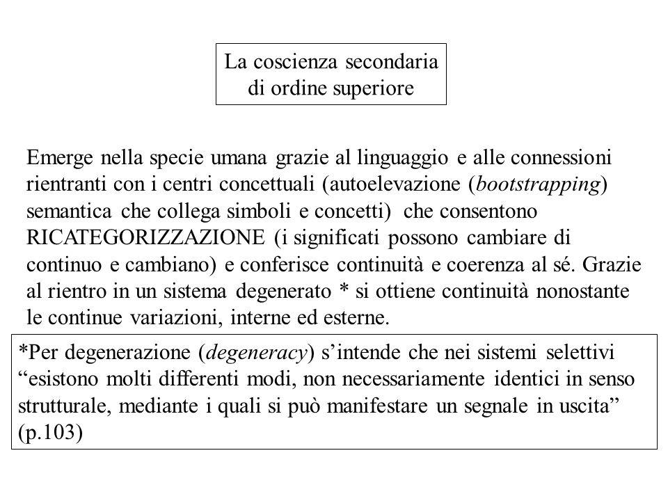 La coscienza secondaria di ordine superiore Emerge nella specie umana grazie al linguaggio e alle connessioni rientranti con i centri concettuali (aut