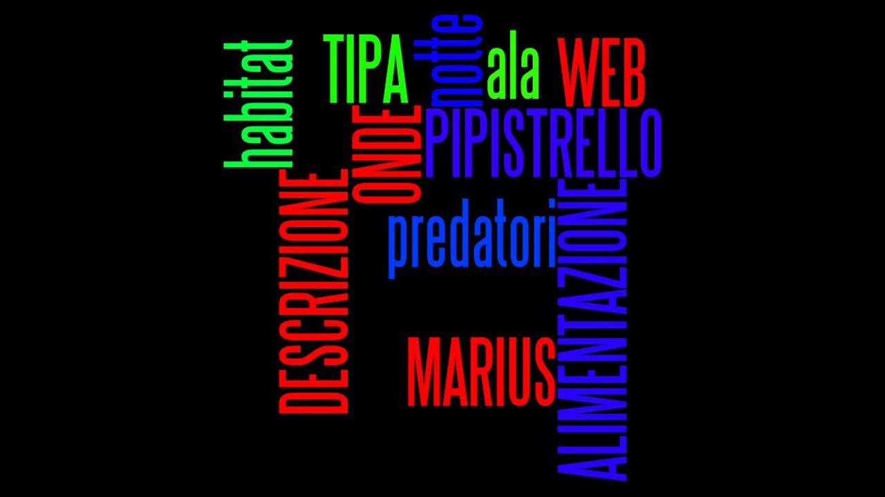 BY MARIUS TIPA