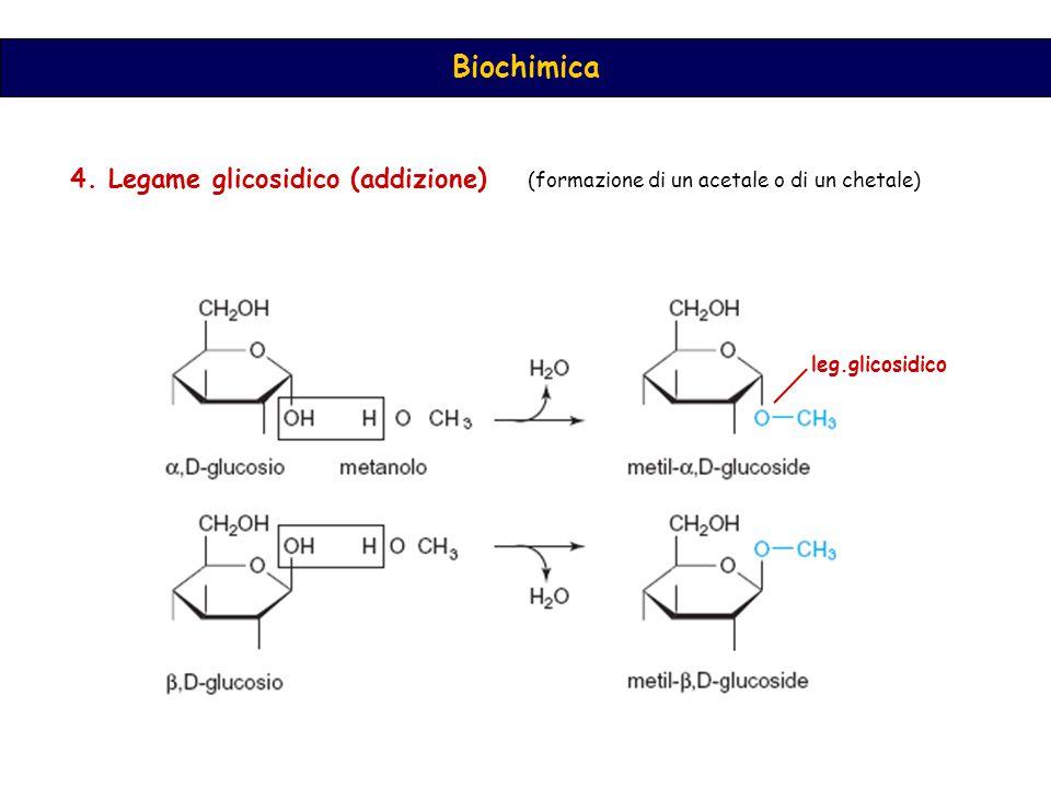 Biochimica 4.