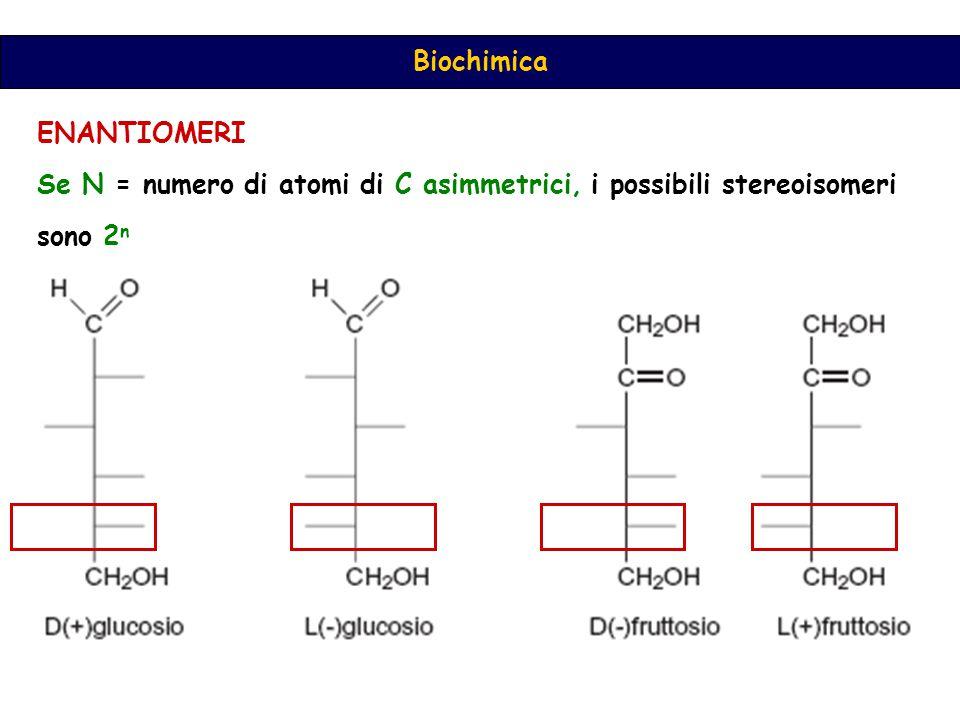 Biochimica ENANTIOMERI Se N = numero di atomi di C asimmetrici, i possibili stereoisomeri sono 2 n