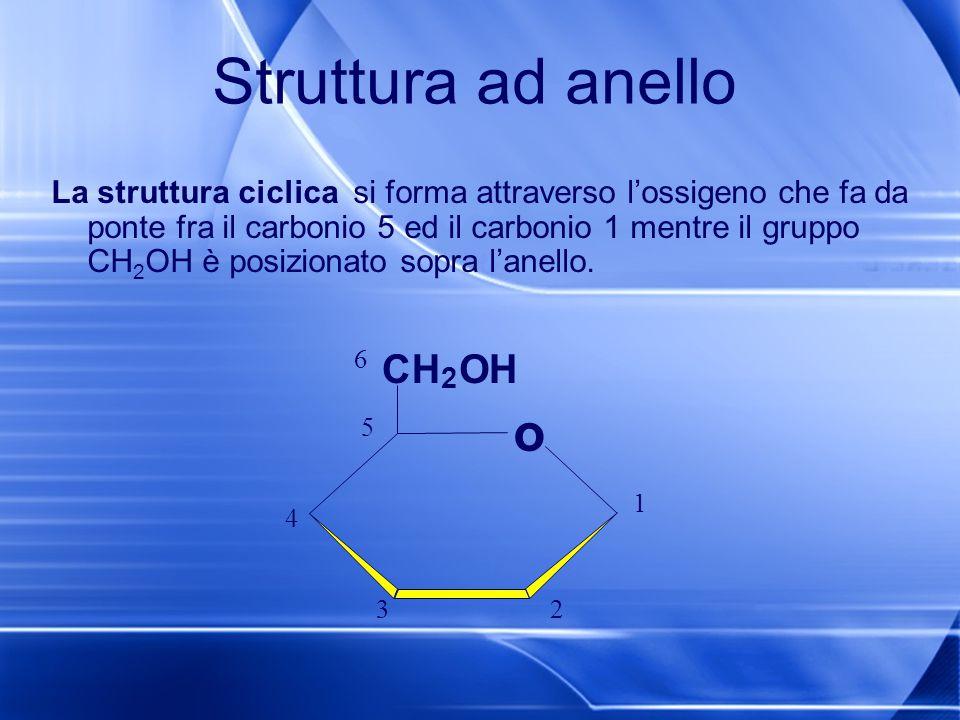 Struttura ad anello La struttura ciclica si forma attraverso l'ossigeno che fa da ponte fra il carbonio 5 ed il carbonio 1 mentre il gruppo CH 2 OH è