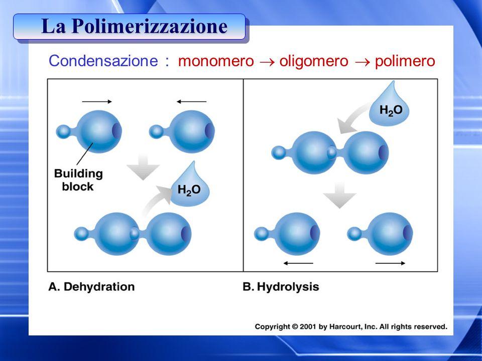Condensazione : monomero  oligomero  polimero La Polimerizzazione