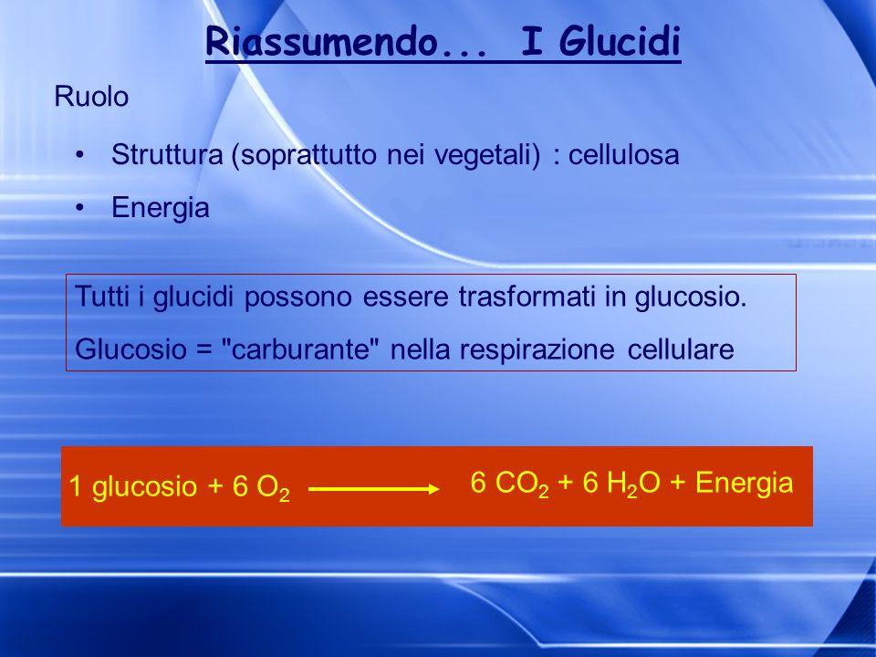 Ruolo Struttura (soprattutto nei vegetali) : cellulosa Energia Tutti i glucidi possono essere trasformati in glucosio. Glucosio =