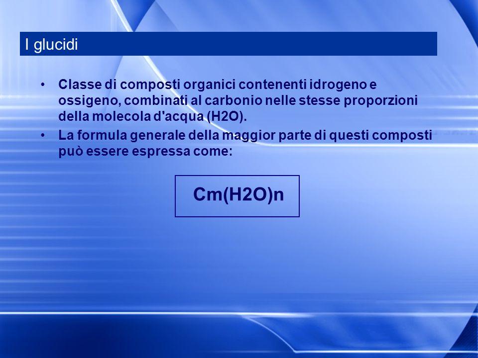 Classe di composti organici contenenti idrogeno e ossigeno, combinati al carbonio nelle stesse proporzioni della molecola d'acqua (H2O). La formula ge
