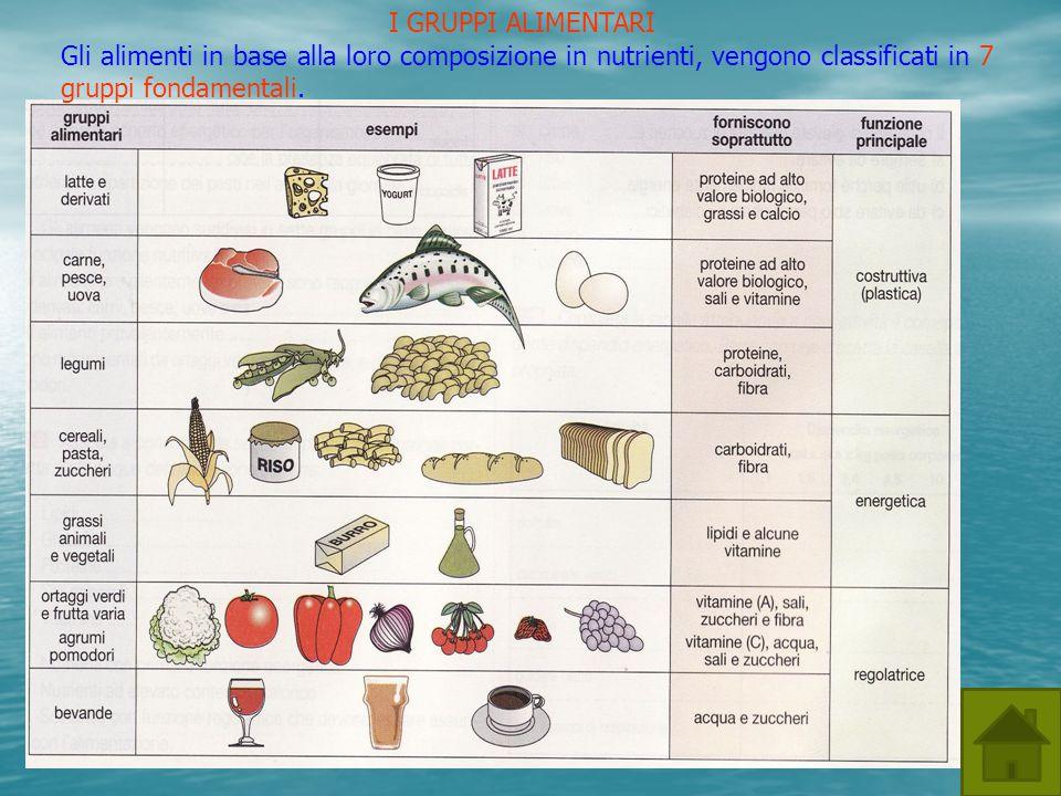I GRUPPI ALIMENTARI Gli alimenti in base alla loro composizione in nutrienti, vengono classificati in 7 gruppi fondamentali.