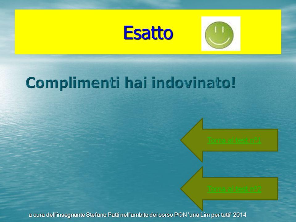 Esatto Torna al test n°1 Torna al test n°2 a cura dell'insegnante Stefano Patti nell'ambito del corso PON 'una Lim per tutti' 2014