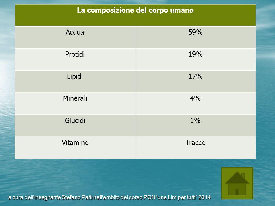 La composizione del corpo umano Acqua59% Protidi19% Lipidi17% Minerali4% Glucidi1% VitamineTracce a cura dell'insegnante Stefano Patti nell'ambito del