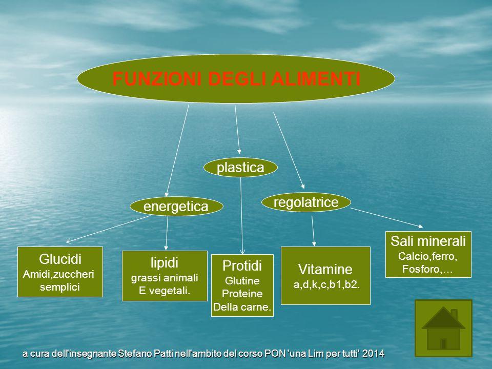 FUNZIONI DEGLI ALIMENTI plastica regolatrice energetica lipidi grassi animali E vegetali. Vitamine a,d,k,c,b1,b2. Protidi Glutine Proteine Della carne