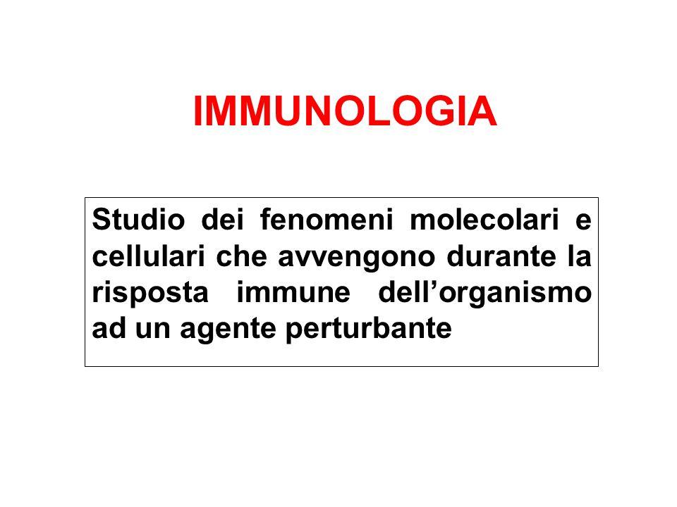 IMMUNOLOGIA Studio dei fenomeni molecolari e cellulari che avvengono durante la risposta immune dell'organismo ad un agente perturbante