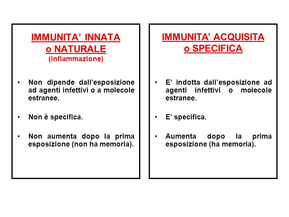 IMMUNITA' INNATA o NATURALE (infiammazione) Non dipende dall'esposizione ad agenti infettivi o a molecole estranee. Non è specifica. Non aumenta dopo