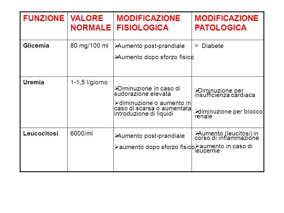 FUNZIONEVALORE NORMALE MODIFICAZIONE FISIOLOGICA MODIFICAZIONE PATOLOGICA Glicemia80 mg/100 ml> Uremia1-1,5 l/giorno Leucocitosi6000/ml Diabete  Dimi