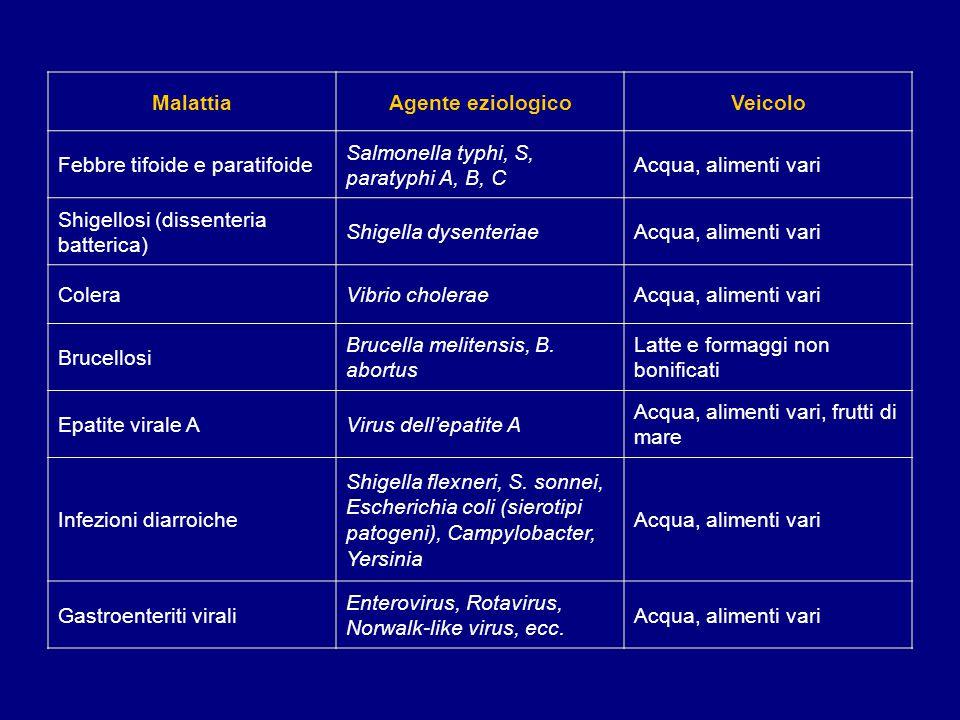 MalattiaAgente eziologicoVeicolo Febbre tifoide e paratifoide Salmonella typhi, S, paratyphi A, B, C Acqua, alimenti vari Shigellosi (dissenteria batt