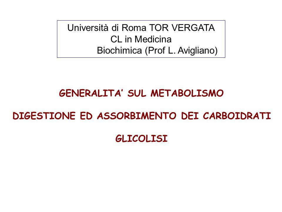 Università di Roma TOR VERGATA CL in Medicina Biochimica (Prof L.