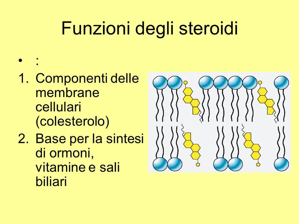 Funzioni degli steroidi : 1.Componenti delle membrane cellulari (colesterolo) 2.Base per la sintesi di ormoni, vitamine e sali biliari