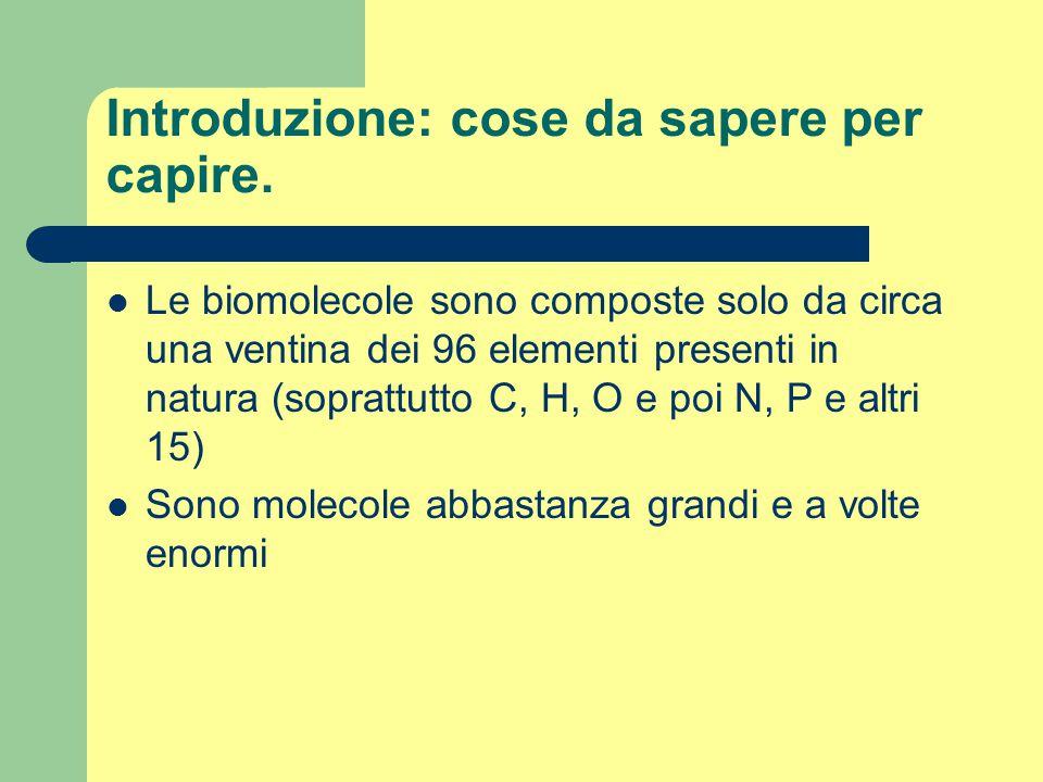 Introduzione: cose da sapere per capire. Le biomolecole sono composte solo da circa una ventina dei 96 elementi presenti in natura (soprattutto C, H,