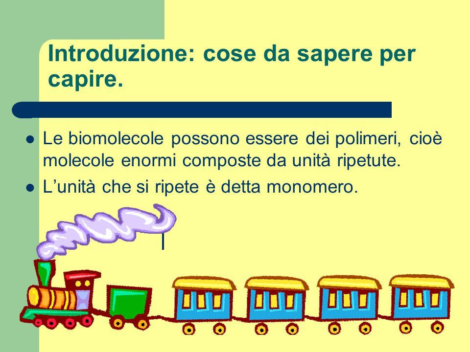 Gli acidi nucleici Sono due: DNA= acido desossiribonucleico RNA= acido ribonucleico