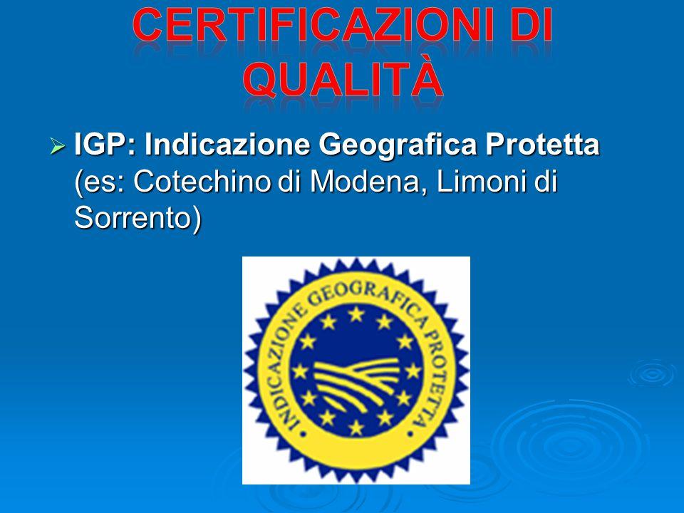  IGP: Indicazione Geografica Protetta (es: Cotechino di Modena, Limoni di Sorrento)