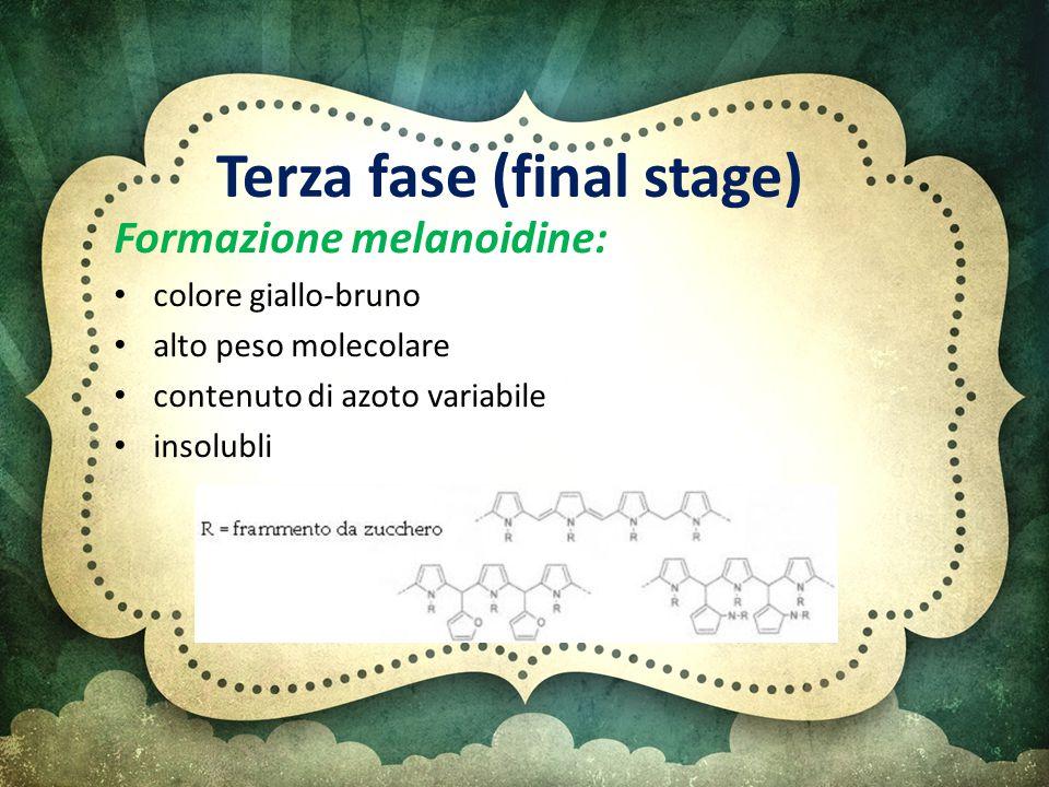 Terza fase (final stage) Formazione melanoidine: colore giallo-bruno alto peso molecolare contenuto di azoto variabile insolubli