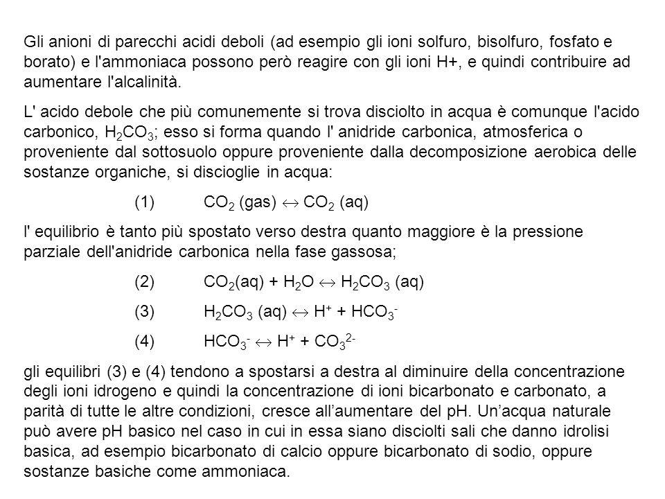 Gli anioni di parecchi acidi deboli (ad esempio gli ioni solfuro, bisolfuro, fosfato e borato) e l'ammoniaca possono però reagire con gli ioni H+, e q