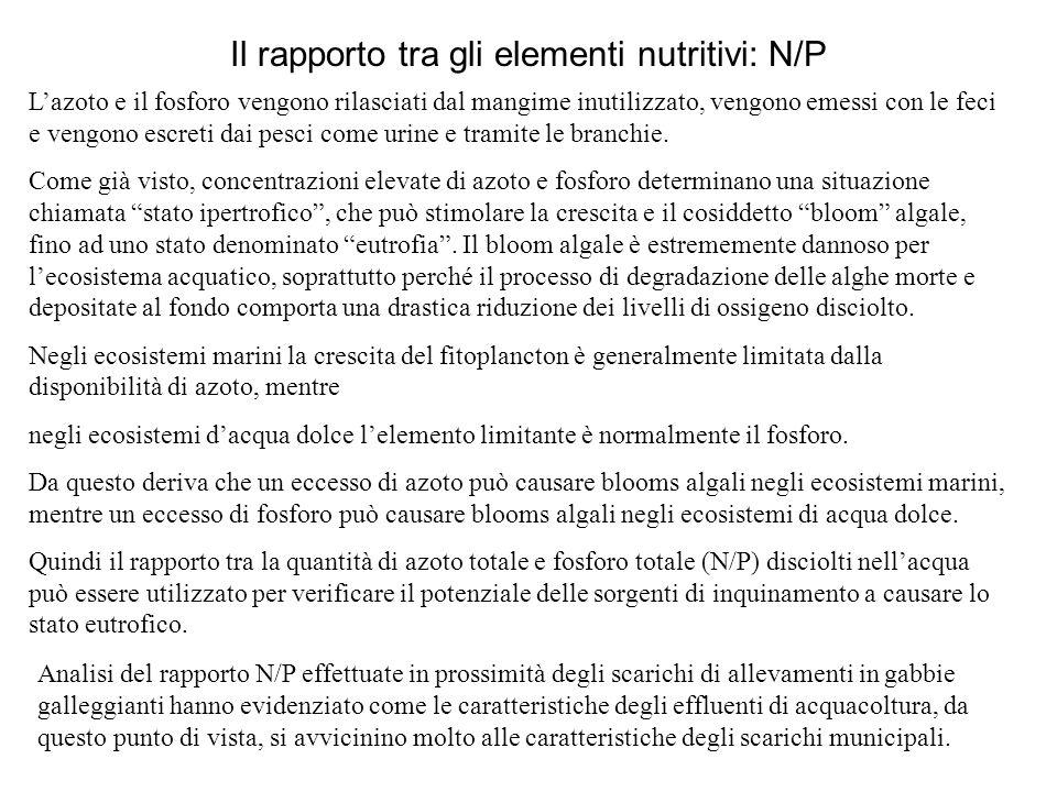 Il rapporto tra gli elementi nutritivi: N/P L'azoto e il fosforo vengono rilasciati dal mangime inutilizzato, vengono emessi con le feci e vengono escreti dai pesci come urine e tramite le branchie.