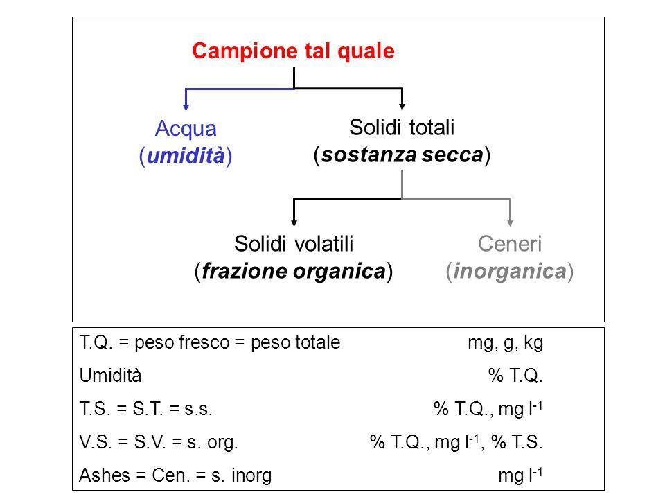 Campione tal quale Acqua (umidità) Solidi totali (sostanza secca) Solidi volatili (frazione organica) Ceneri (inorganica) T.Q. = peso fresco = peso to